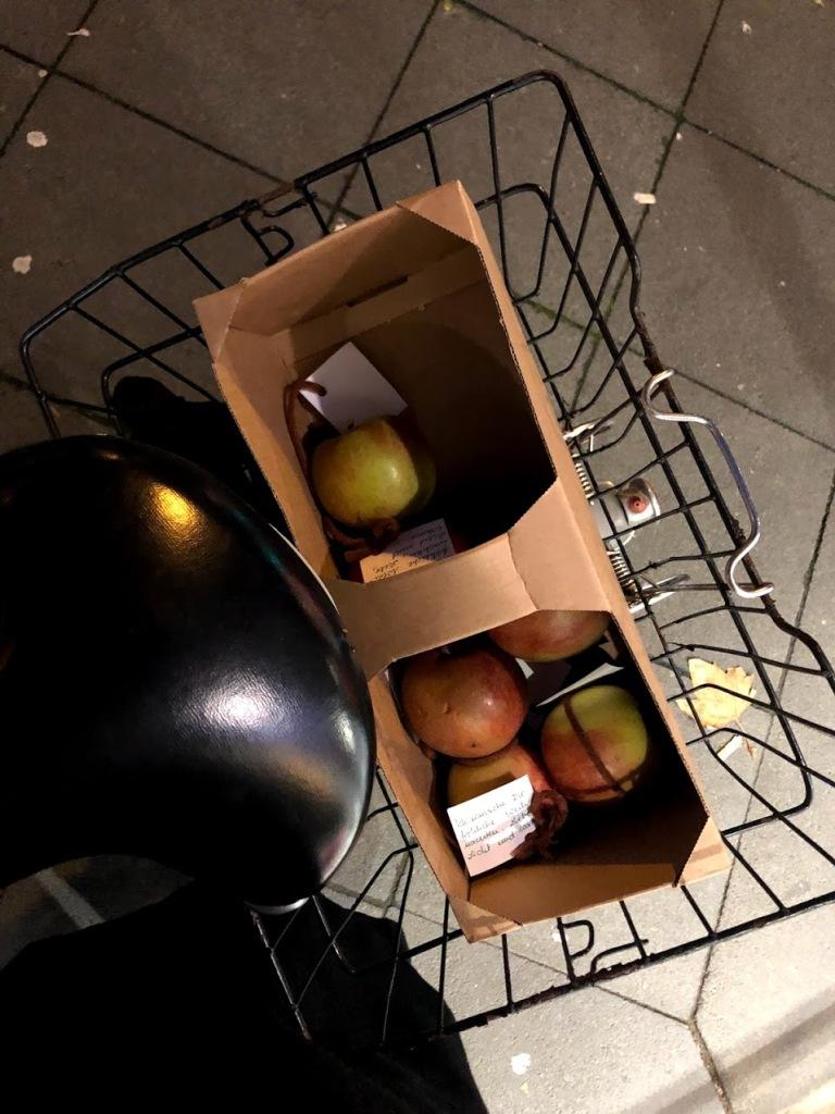 Eine fast leere Apfelbox im Fahrradkorb